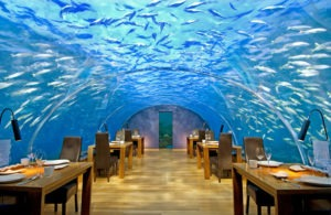 An island resort nestled in South Ari Atoll, three degrees above the equator, Conrad Maldives is set on two private islands, joined by a footbridge across a dreamy blue lagoon. Ithaa Undersea Restaurant is set 5 meters below the sea.